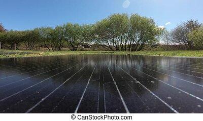 modules, photovoltaïque, fond, temps, arbres, pf, vaches, ...