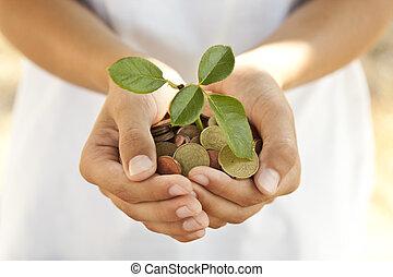 moedas, conceito, poupar, mãos