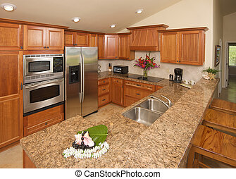 Moern Kitchen - Modern Kitchen with brushed aluminum...