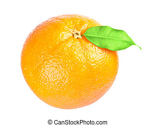 mogen, apelsin, med, bladen, vita, bakgrund