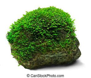 moha, kő