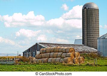 mohawk valley farm