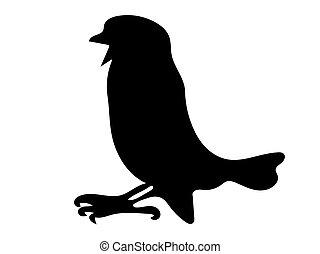 moineau, oiseau, vecteur, silhouette