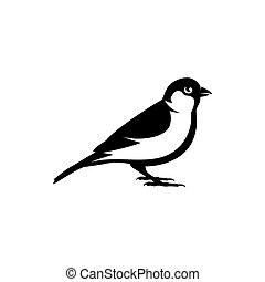 moineau, vecteur, oiseau, silhouette