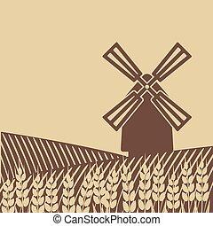 moinho de vento, campo, trigo