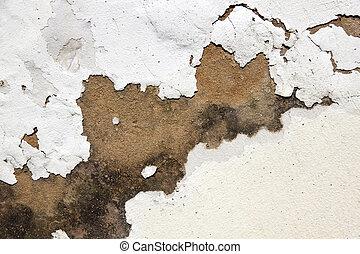 écaillement Mur Humide Peinture Levée Extérieur Indiquer