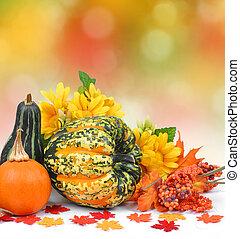 moissonné, feuilles, potirons, automne