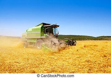 moissonneuse-batteuse, blé, céréale, récolte