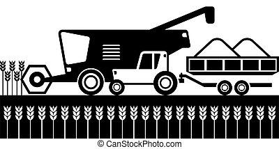 moissonneuse, combiner, champs blés, tracteur