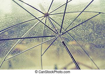 mojado, transparente, paraguas