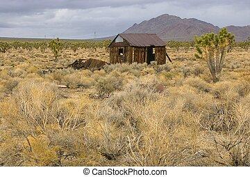 Abandoned shack in a joshua tree desert.