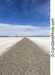 Mojave Desert Dry Lake Salt Falt Road