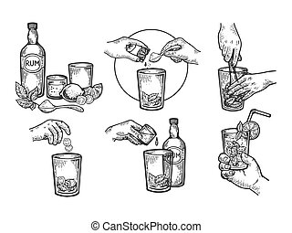 Mojito drink creation instructions engraving vector...