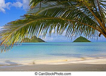 mokulua, desligado, praia, lanikai, oahu, ilhas