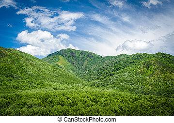 moky Mountains Landscape