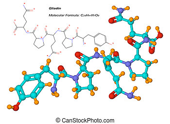 molécula, componente, gluten, gliadin