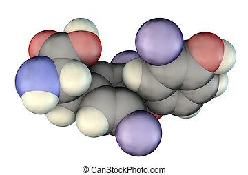 molécula, tiroides, hormona, triiodothyronine