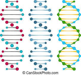 moléculas, tres, variantes, hebra, doble, adn