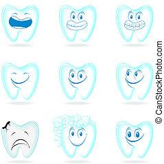 molar dental characters