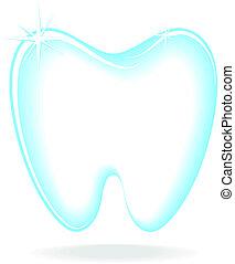 molar, vetorial