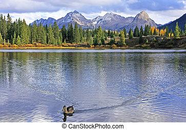 molas, tó, és, tű, hegyek, weminuche, vadon, colorado
