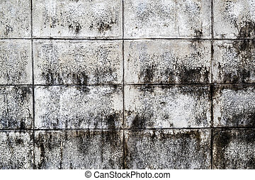 Mold growth and water stains on the ceiling of an abandoned ...