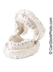 molde, de, un, lleno, conjunto, de, dientes humanos