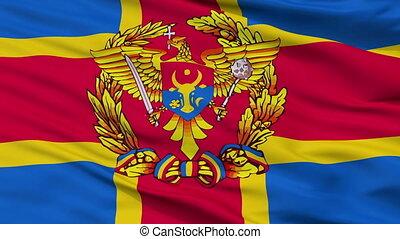 Moldovan Armed Forces Flag Closeup Seamless Loop - Moldovan...