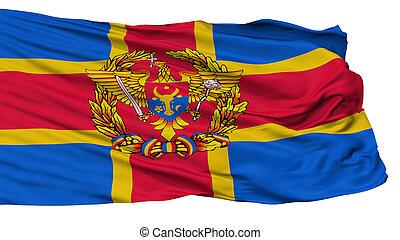 moldovan, bevæbne fremtvinge, flag, isoleret, på hvide
