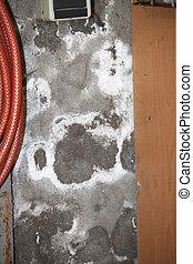 damp basement walls