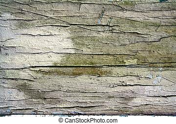 Moldy paint cracks