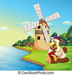 molino de viento, libro, lectura, pato