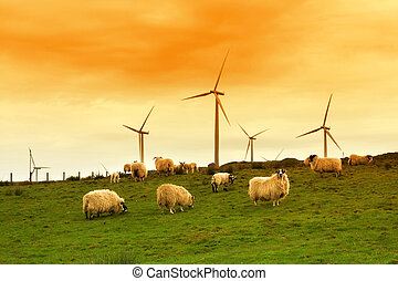 molino de viento, moderno, anochecer