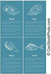Mollusk and Bream Fish Set Vector Illustration