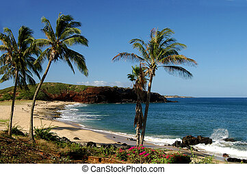 Molokai Coastline - Captured on the west end of beautiful ...