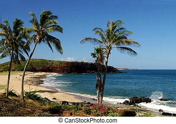 molokai, linea costiera