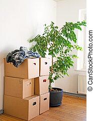 molti, accatastato, spostamento, scatole, stanza