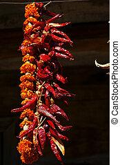 molti, di, rosso caldo, pepe peperoncino rosso