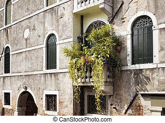 molti, fiori piante, in, balcone, di, vecchio, storico, tipico, b