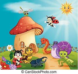 molti, insetto, foresta, fungo, casa
