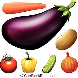 molti, tipo, di, verdure fresche