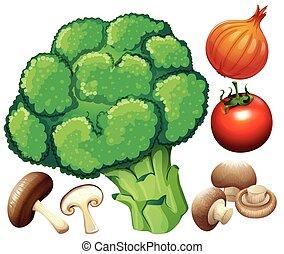 molti, verdura, bianco, fresco