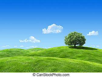molto, dettagliato, 7000px, albero, su, lea, sagoma, -,...