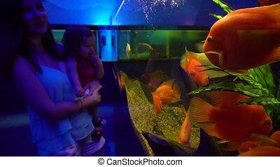 Mom and little daughter exploring exotic aquarium - Woman...