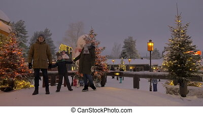 Mom, dad and son in the park decorated with Christmas lights