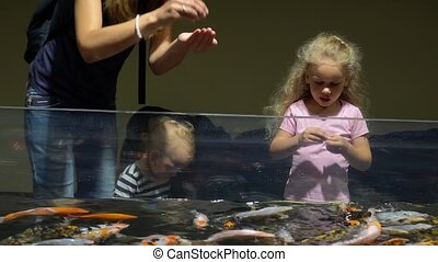 Mom with son and daughter feeding colorful fishes in big...