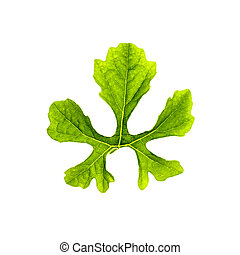 Momordica charantia leaf. - Leaf of Momordica charantia on...
