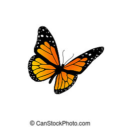 Illustration of a monarch butterfly isolated on white