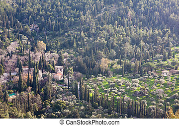 Monastery in Ymithos mountain