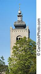 Monastery towers behind tree tops